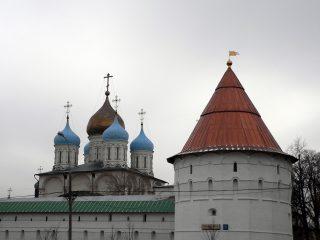 Новоспасский монастырь в Москве, купола Спасо-Преображенского собора и Северо-восточная башня